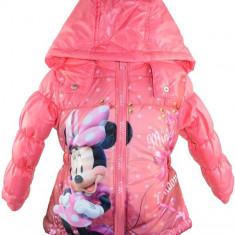 Geaca pentru fetite Sun City Minnie Mouse PH0148RO, Multicolor