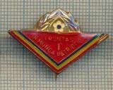 Y 858 INSIGNA - PIONIERI -FRUNTAS IN MUNCA PATRIOTICA - PENTRU COLECTIONARI