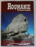 ROUMANIE PANORAMA de MELANIA PAPUGIU , EDITIE BILINGVA ROMANA - FRANCEZA , 1996