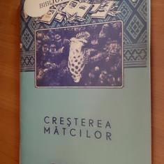 CRESTEREA MATCILOR - IOAN BARAC .ANUL 1956 .EDITURA AGROSILVICA DE STAT