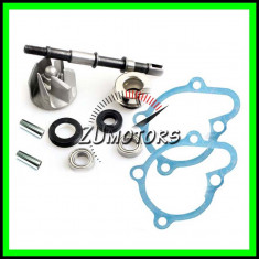 Kit POMPA APA Moto Atv 250 300 GY6 China 4T