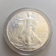 1 Dollar 2008 Argint: 0.999 Gr: 31.10, America de Nord