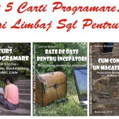 Pachet Promotional Carti Programare Incepatori (4+1)