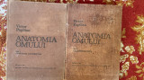 Cumpara ieftin ANATOMIA OMULUI AUTOR V.PAPILIAN.VOL 1SI 2.AN 1982