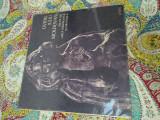 Ovidiu iuliu moldovan - versuri, disc vinil vinyl placa electrecord
