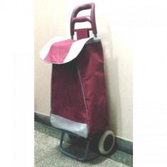 Carucior de cumparaturi Troller visiniu foto