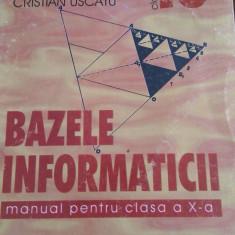 LXXR2 - Bazele informaticii manual pt cls X