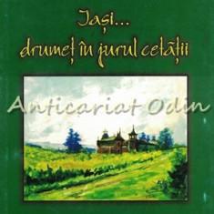 Iasi Drumet In Jurul Cetatii - Vasile Iluca