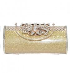 Poseta eleganta cu aplicatii deoesbite,nuanta de auriu