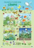 Plansa - Fauna si flora din campie | Nelson Verlag, Didactica Publishing House