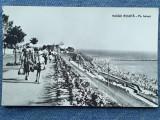 377 - Vasile Roaita - Pe faleza / carte postala RPR circulata, Necirculata, Fotografie