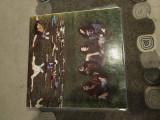 Survolaj, disc vinil vinyl electrecord placa pickup