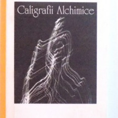CALIGRAFII ALCHIMICE de GABRIEL STAN , 2007