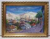 Nicolcea Spineni - Vedere spre Balcic