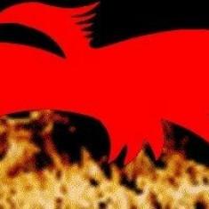 Phoenix Cantafabule Remix - 1998