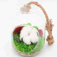 Cumpara ieftin Terariu cu licheni naturali stabilizati, floare de bumbac, flori de orez si lavanda, Nordic Zen