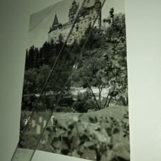 FOTOGRAFIE VECHE - CASTELUL BRAN