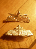 Pereche Insemne militare NATO ,  metal argintat ,L=4x2cm
