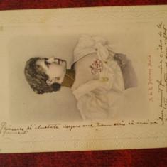 C.P.circulata- Principesa Maria-RARA