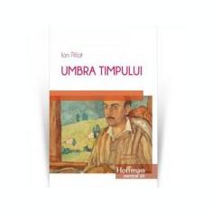 Umbra timpului - Ion Pillat