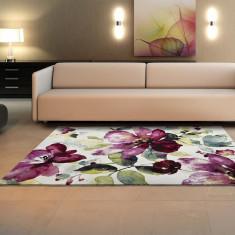 Covor Colors 60x120 cm