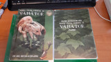 MANUAL PENTRU EXAMENUL DE VANATOR  + PLANSE  - NECULAI SELARU