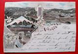 Salutari din Valcea litho 1899 / taiata pe margini, Circulata, Printata