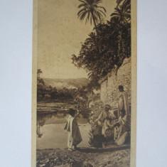 Carte postala 150 x 75 mm necirculata Egipt-La amiaza in oaza anii 20