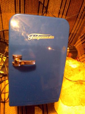 Mini Frigider Fridgemaster foto