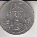 Moneda 25 bani, R. S. R., 1966