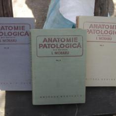 ANATOMIE PATOLOGICA - I. MORARU 3 VOLUME