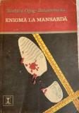 Enigma la mansarda Rodica Ojog Brasoveanu