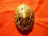 Insigna Academia Militara , inceput anilor '90 , metal argintat , h=6cm