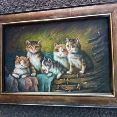 Ulei pe pânză familie de pisicute