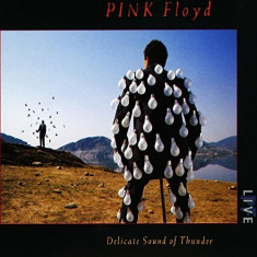 Pink Floyd Delicate Sound Of Thunder Box (2cd)