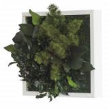Tablou plante conservate Artflora Rama MDF alb 25CM