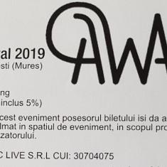 Bilet festival Awake.
