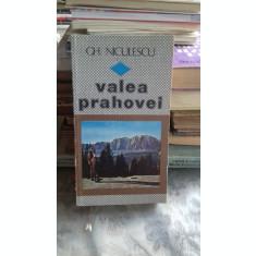 VALEA PRAHOVEI - GH. NICULESCU