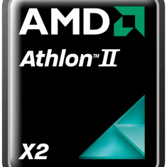 Procesor AMD Athlon II X2 250 Dual Core, 3GHz Socket AM3, Cache 2MB