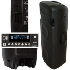 Boxa portabila activa, 2 x 15 inch, 500 W RMS, 2 microfoane, telecomanda inclusa