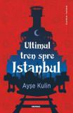 Ultimul tren spre Istanbul, Ayse Kulin