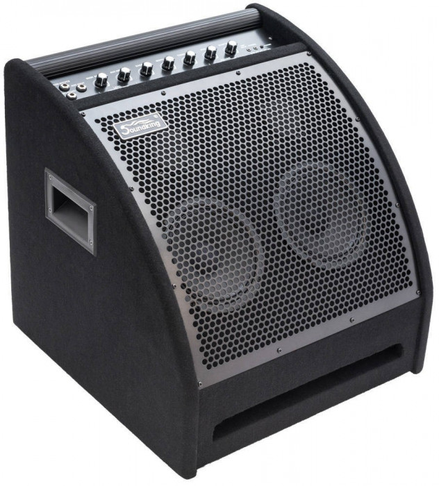 DS 200-Monitor Activ-Soundking