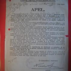 HOPCT DOCUMENT VECHI NR 286 APEL PTR CATEDRALA CONSILIUL ORTODOX ROMAN CLUJ 1930