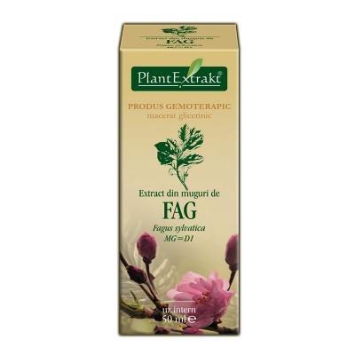 Extract din muguri de FAG 50ml Plant Extrakt foto