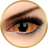 Sclera Shadowcat - lentile de contact colorate negre anuale - 185 purtari (2 lentile/cutie)