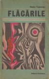 Flacarile: roman - Radu Tudoran