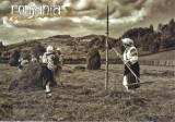 Carte postala Bucovina SV155 Manastirea Humorului - La camp