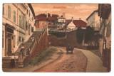 SV * Sibiu  SCARA  CETATENILOR   cca. 1915, Circulata, Fotografie, Printata