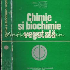 Chimie Si Biochimie Vegetala - I. Burnea - I. Burnea, Ionela Popescu, G. Neamtu,