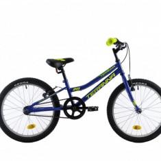 Bicicleta Copii DHS Junior Teranna 2003 Albastru 20